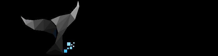 企业网站建设 - 青岛黑鲸网络科技有限公司